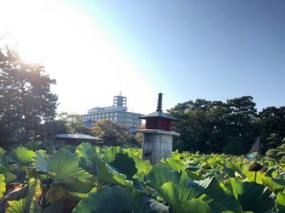 【ブログ】予告(2019/10/01)のイメージ