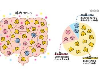 【ブログ】急がば回れ(2020/07/13)のイメージ4