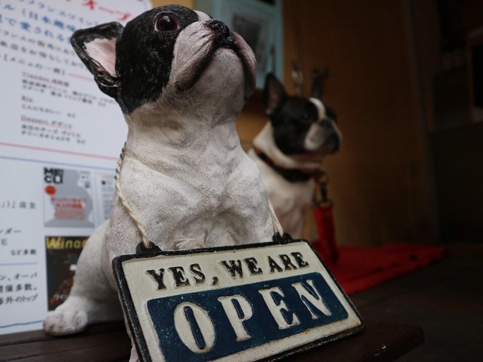 ジャポノフィル こんにちワイン 高円寺のビストロバー | 看板犬たけし