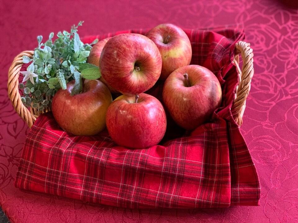 奈良天理/本格紅茶の英国カフェKURINOKI(くりのき)&クレープ移動販売Marron(マロン) | 🔱信州安曇野産のおいしいりんご入荷しました🍎🔱