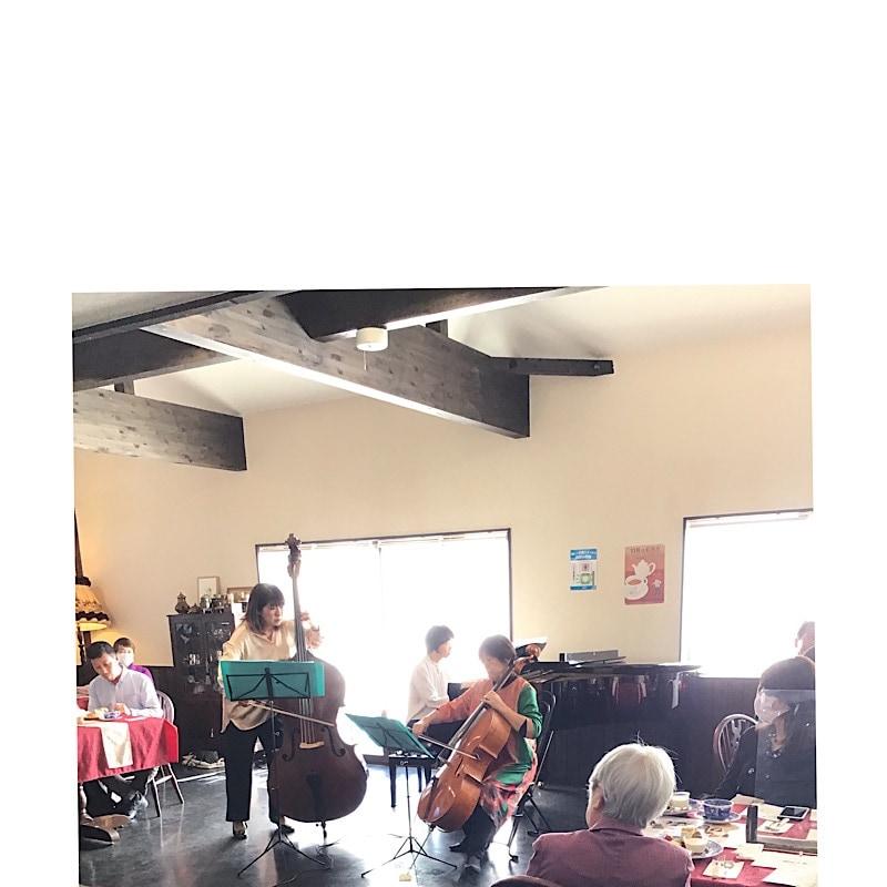 奈良天理/本格紅茶の英国カフェKURINOKI(くりのき) | 🔱無事終了御礼申し上げます🔱
