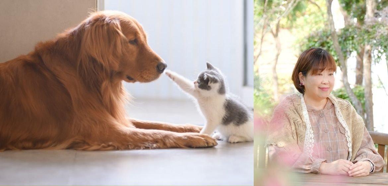 はるさろん〜淡路島〜すべての会話は肯定からはじまる心理カウンセリング|ウエルスダイナミクス| ペットの心を通訳するアニマルコミュニケーション |食&心育さろんTONTON〜