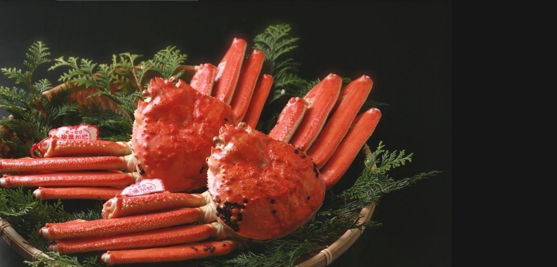 山陰日本海の鮮魚・通販|美保水産有限会社【鳥取県米子市】獲れたての処理済みのお魚を全国へお届けします(真空・冷凍)