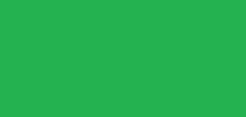 【サステナブルショップ】古着屋「ハンドミーアップス」&自然栽培「えん農園」高知県四万十市