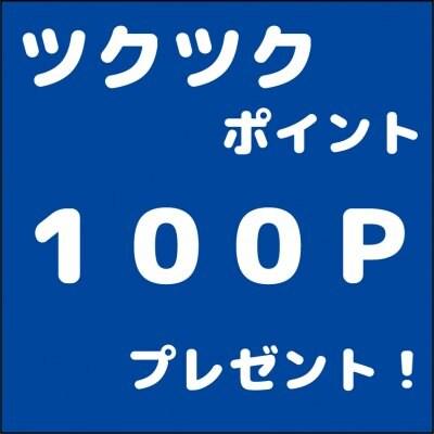ツクツクポイント100Pプレゼント!(サイト内で100円として使えます♪)