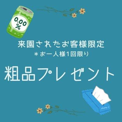 【メルマガ登録時限定】粗品プレゼント
