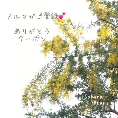 メルマガ登録ありがとうクーポン☆まつげ・エステ1000円オフチケット!
