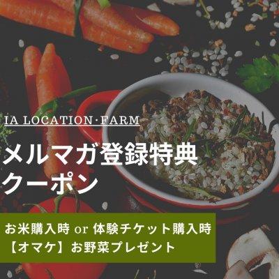 ご購入の方【オマケ】お野菜プレゼント