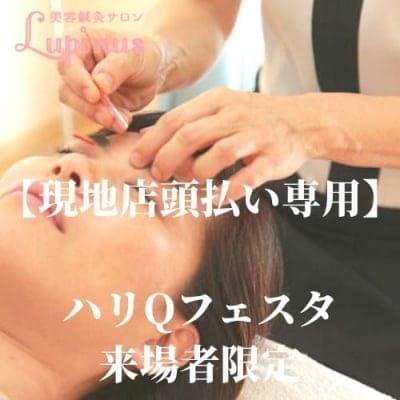 【ハリQフェスタ来場者限定】美容鍼灸プレミアムA、B (120分)初回体験クーポン