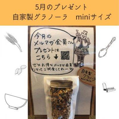 5月 メルマガ会員様限定プレゼント!