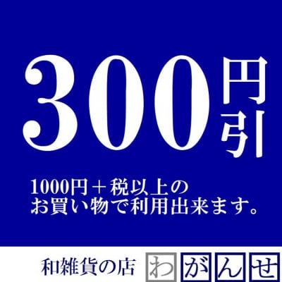 1000円のお買い物で300円割引クーポン