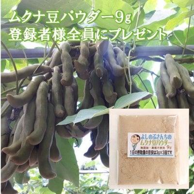 メルマガ登録でムクナ豆パウダー9g全員にプレゼント!!
