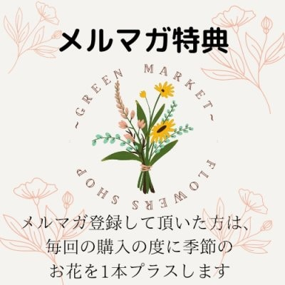 【お会計時¥1000円オフ】3月まで