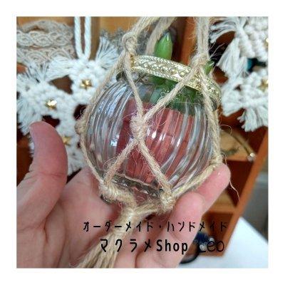 メルマガ初回登録者限定で3,000円以上の商品ご購入の方はサンキャッチャープレゼント♪