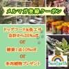 【メルマガ登録初回限定!!】ドッグフード&魚エサ25%OFF  雑貨10%OFF 多肉植物プレゼント