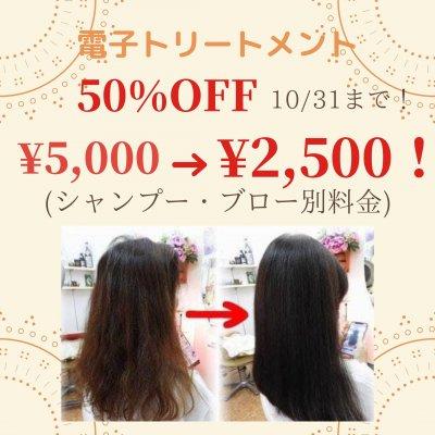 電子トリートメント50%OFF!¥5,000→¥2,500(10/31まで!)