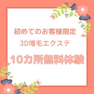 3D増毛エクステ【体験10カ所】