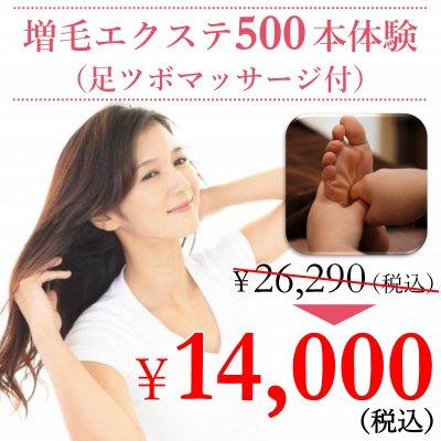 増毛エクステ500本体験(足ツボマッサージ付)クーポン ¥26,290-(税込)→¥14,000-(税込)