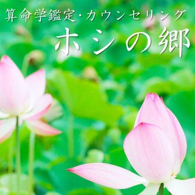 ホシの郷〜算命学鑑定〜