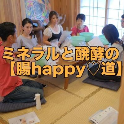 手作り玄米味噌作り&ミネラル醗酵ドリンク教室なら、沖縄県糸満市の【腸happy道】