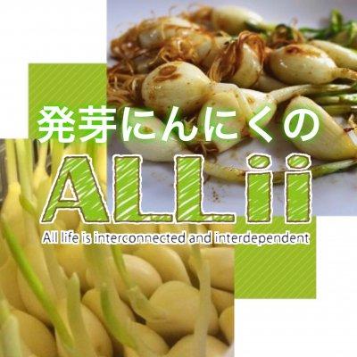発芽にんにくのALLii(オーリー)|芽も根も丸ごと食べられるガーリックスプラウトはニンニクの「りん片」を発芽させた完全無農薬の発芽野菜です。