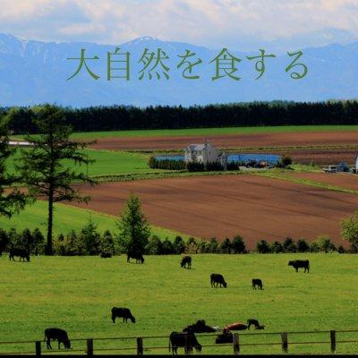 ノーザンファーム株式会社 北国から   土壌改良 地域創生 オーガニック
