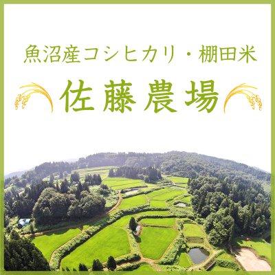 新潟/魚沼産コシヒカリ/棚田米/小千谷/佐藤農場