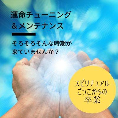 Terra Verde (テラ ヴェルデ)