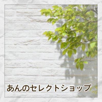 水素 美容と健康【あんのセレクトショップ】