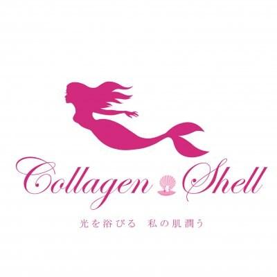 プロが選んだCollagen shellセレクトショップ