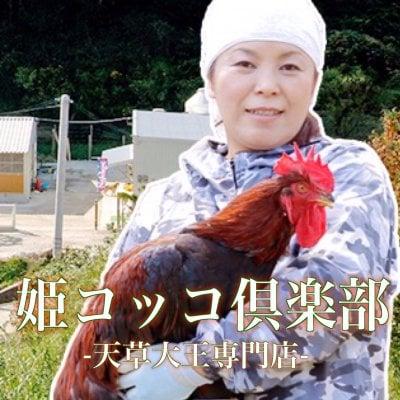 天草大王専門店 姫コッコ倶楽部-幻の地鶏肉-