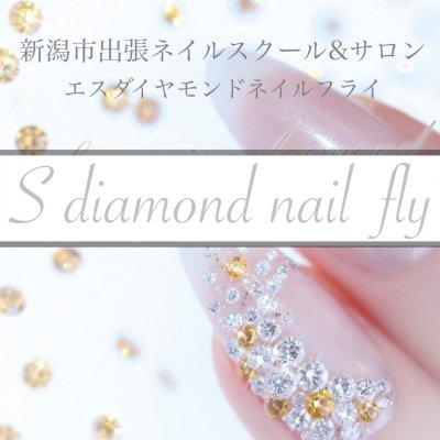 新潟市東区ネイルスクール&ネイルサロンS Diamond Nail-エスダイヤモンドネイル-ネイルビット/ロシアンマニキュア
