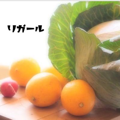 体に優しいお野菜販売リガール