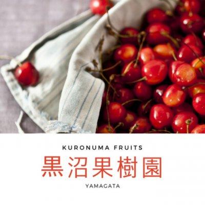 山形県天童市から愛情たっぷりのフルーツをお届け〇黒沼果樹園〇