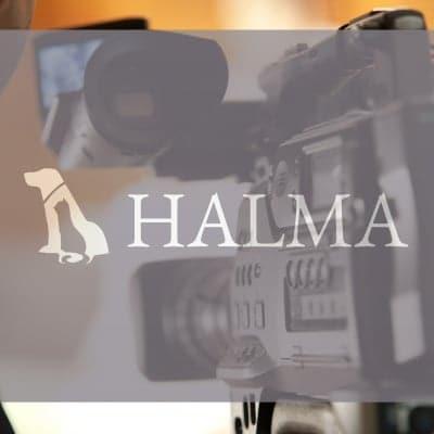 HALMA 映像制作会社