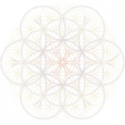 FC PASSION 肥前鹿島のサッカースクール