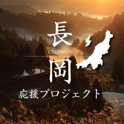 長岡中越応援プロジェクト~Nagaoka Web Marche ~新潟県長岡市