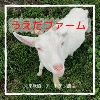 こだわり農園の奈良うえだファーム/お米、いちじく