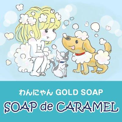 人とペットが健康な肌でいる為の手作り石鹸とナチュラルライフの為のお店  ハロワンゴールドソープ
