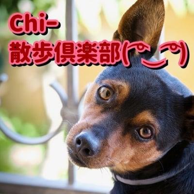 ( ͡° ͜ʖ ͡°)Chiー散歩倶楽部( ͡° ͜ʖ ͡°)