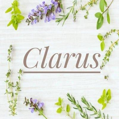 Clarus(クララス)