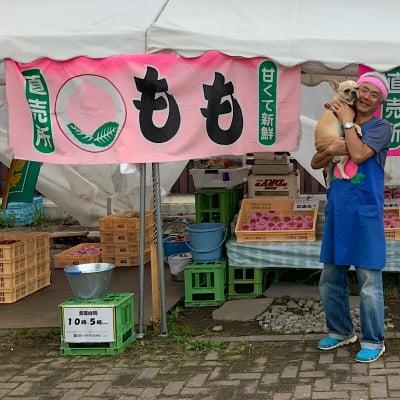 信州応援プロジェクト〜Shinsyu Web Marche〜〔ずくっ子まるしぇ〕