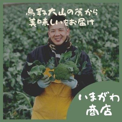 今川農園自家製 茎のビール漬けプレゼント!!