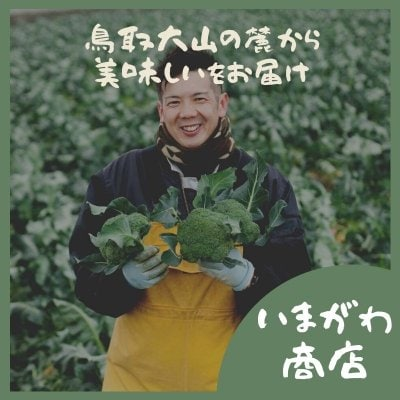 鳥取県西伯郡日吉津村のとれたて野菜をお届け!今川農園