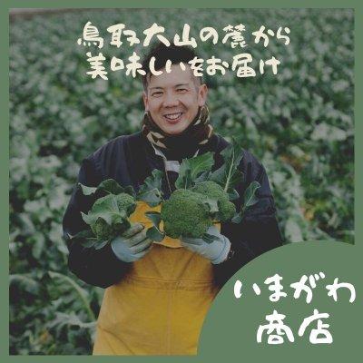 鳥取県西伯郡日吉津村のとれたて野菜をお届け!いまがわ商店(今川農園)
