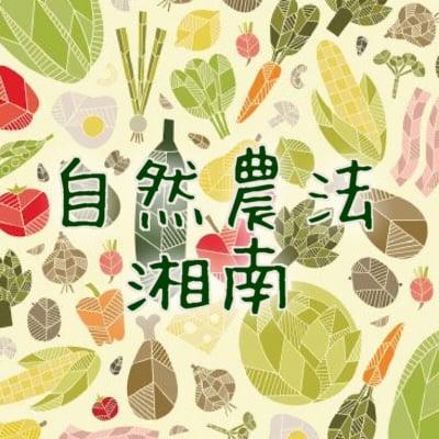 """無農薬無肥料の自然栽培野菜通販なら""""湘南 自然農法"""""""