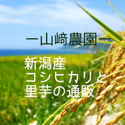山崎農園-YAMAZAKINOUEN-