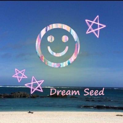Dream Seed 石井亜矢子