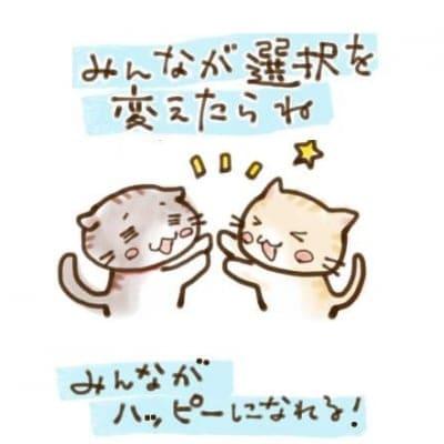 猫カフェきぶん屋 × 健康習慣