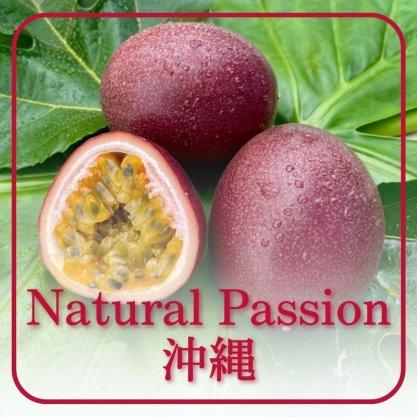 NaturalPassion沖縄無農薬パッションフルーツ